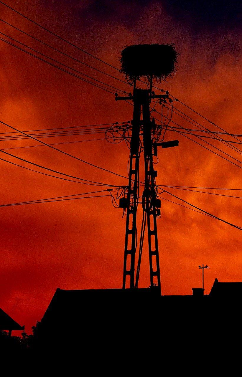 pylon, cable electric, nest-4209595.jpg